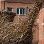 Photograph of Patrick Dougherty's installation in front of UNC's Ackland Art Museum