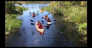 Photograph of students kayaking in coastal ecosystems